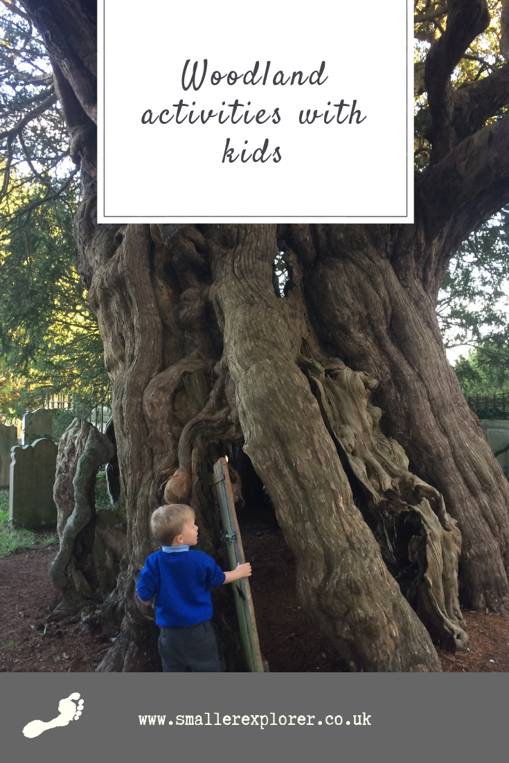 woodland activities for kids