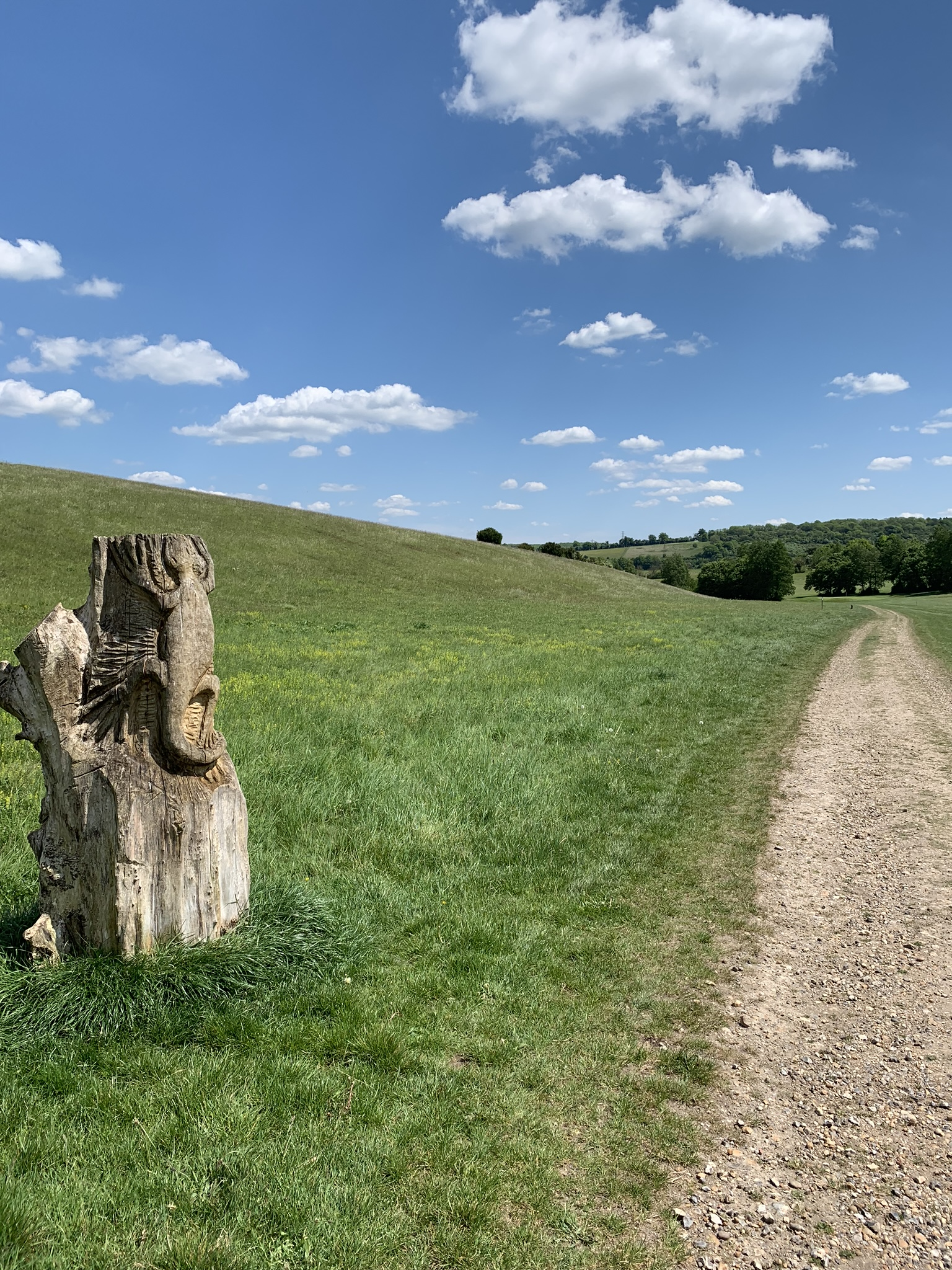 30 Days Wild Day 26: Exploring Lullingstone Country Park in Kent
