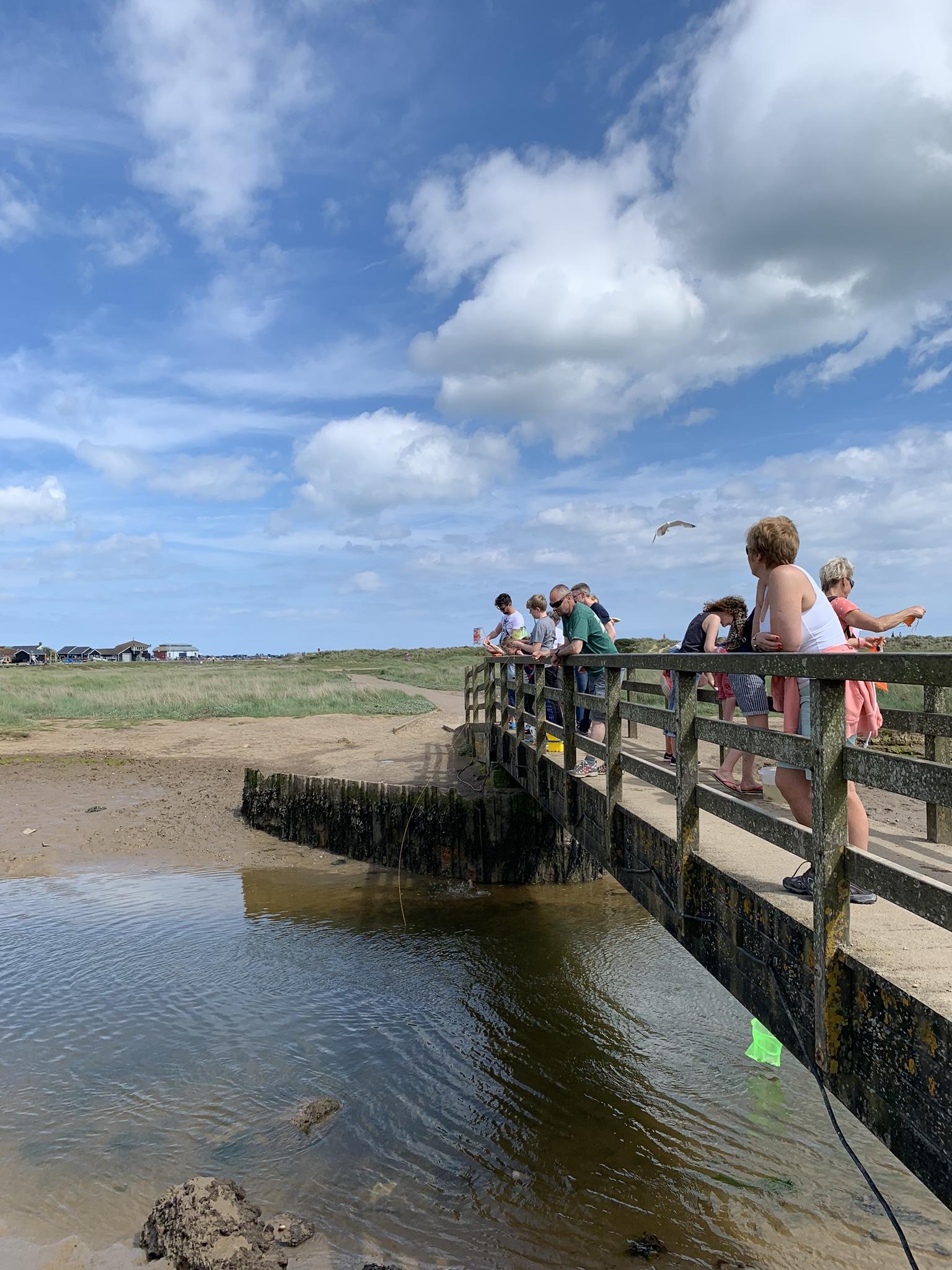 30 Days Wild day 2: Crabbing in Walberswick - The Smaller Explorer