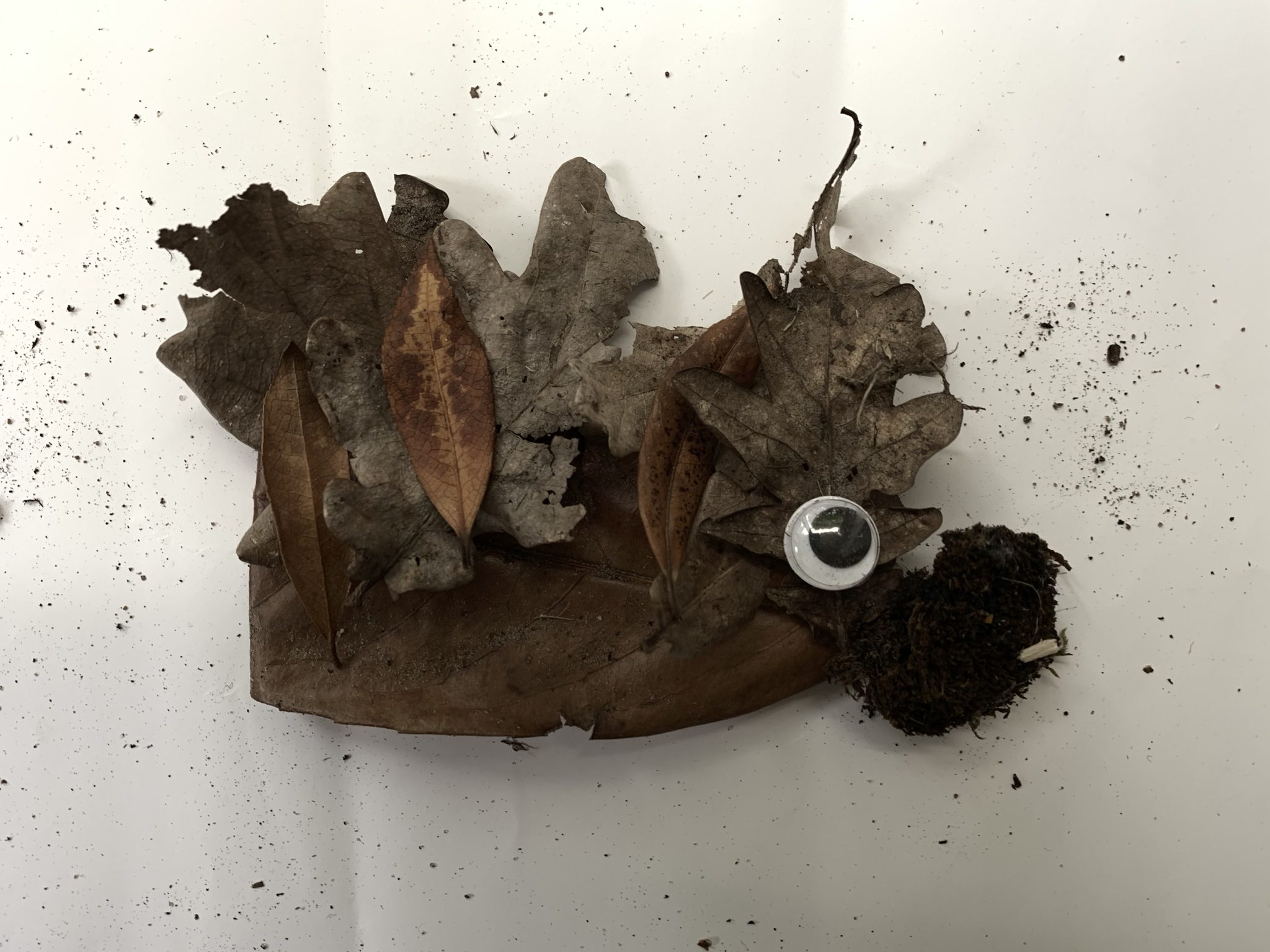 Making nature creatures, hedgehog made from leaves