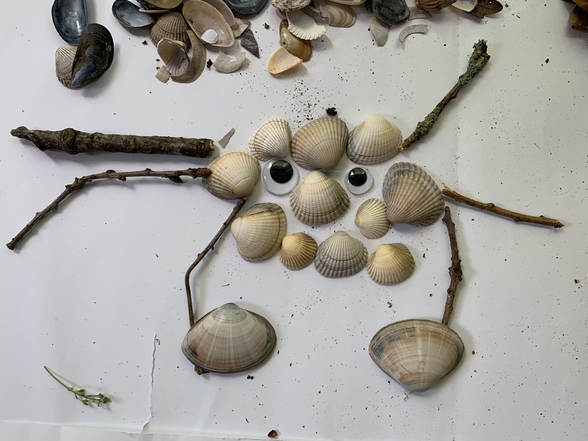 Making nature creatures, crab made from shells