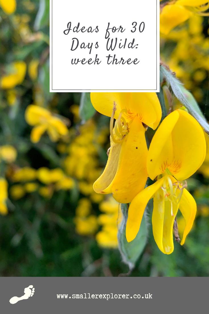 30 Days Wild week 3